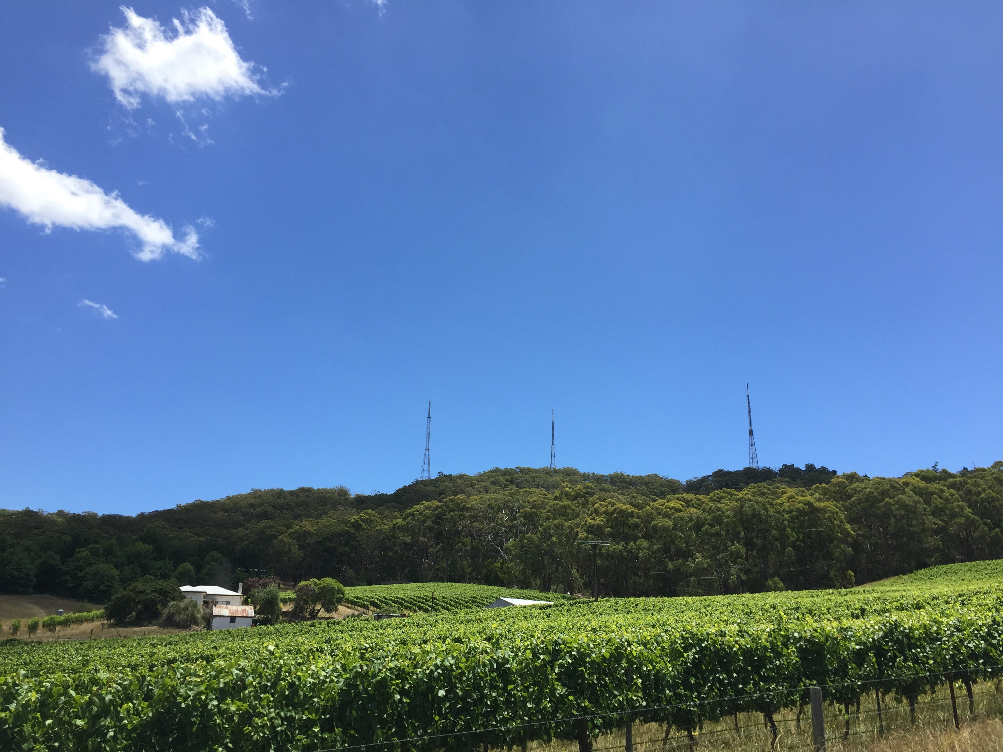 Mount Lofty TV Towers